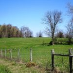 32.593 Acres on Fenner Road & SR 124, Hillsboro – $332,850