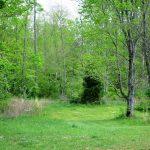 Pied Piper Parkway, Hillsboro – $6,000