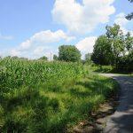 3 Acres McAfee Road, Hillsboro – $23,900